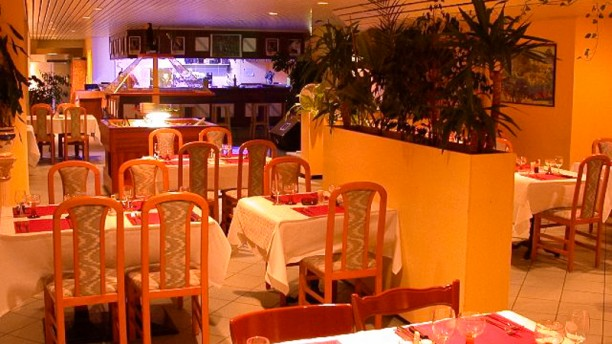 Tucano In Lausanne Restaurant Reviews Menu And Prices Thefork