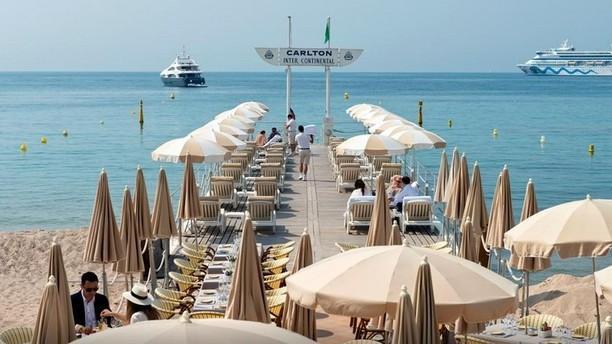 the carlton beach restaurant hotel carlton cannes sur. Black Bedroom Furniture Sets. Home Design Ideas