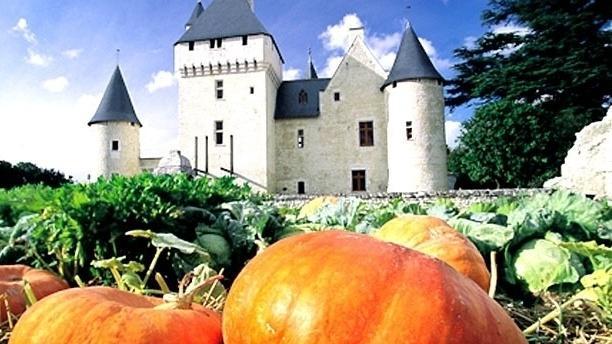 Table des Fées du Château du Rivau Vue château 1