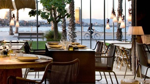 Terra Mare Restaurant Menu