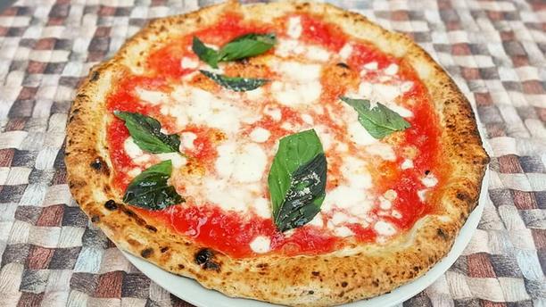 Terra Mia Pizza