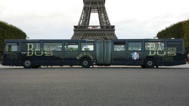 Bacchus Bus Bacchus Bus