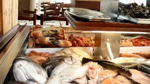 Marisqueira Atlântico Peixe