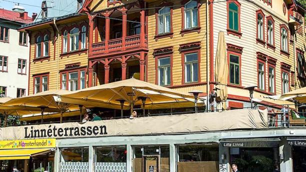 Linnèterrassen Ingång