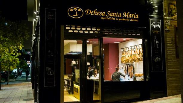 Dehesa Santa María Vista entrada