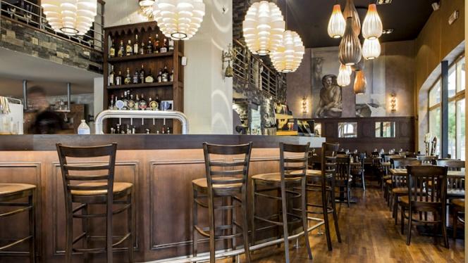 Vue bar - Grimbergen Café, Brussels
