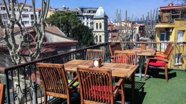 Zahir The terrace
