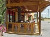 Caffè Terre di Masaccio