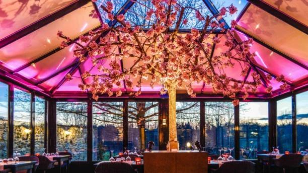 Le Clos des Vignes Le restaurant et son Cerisier