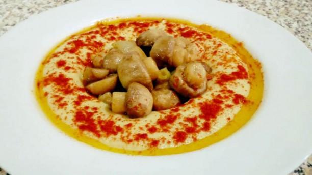 Casa de Hummus Sugestão do chef