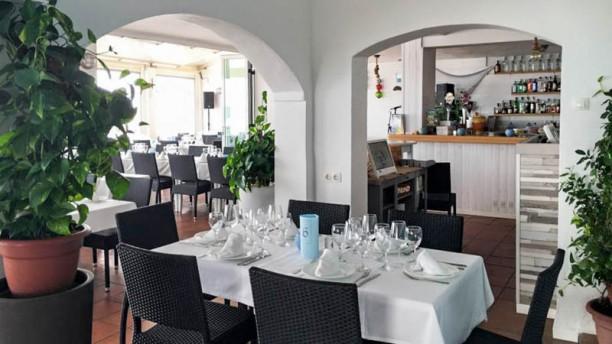 Restaurante Aquí Te Quiero Ver Costabella En Marbella Opiniones