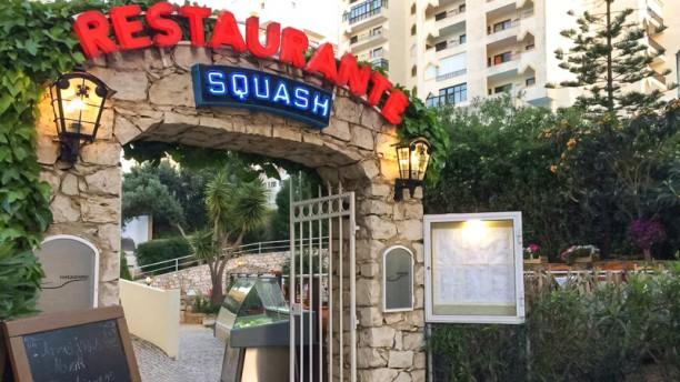 Squash Entrada