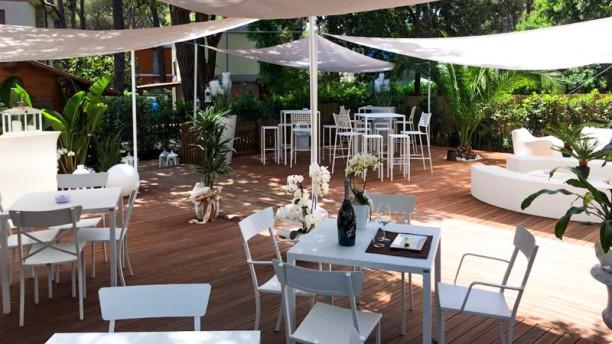 Barlume Lounge In Marina Di Castagneto Carducci Restaurant