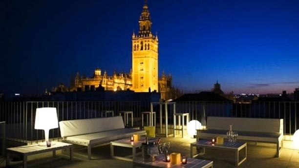 Morrison's - Hotel Eurostars Sevilla Vista desde la terraza