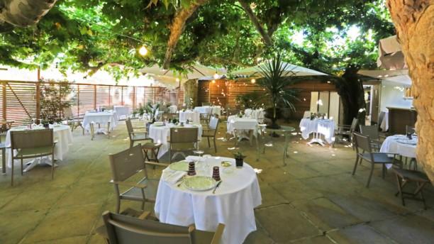 Hôtel-Restaurant Claude Darroze Vue de la terrasse