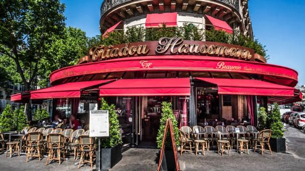 Le Triadou Haussmann Terrasse
