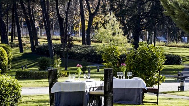 Vista Jardín - Café de Oriente Museo del Traje, Madrid