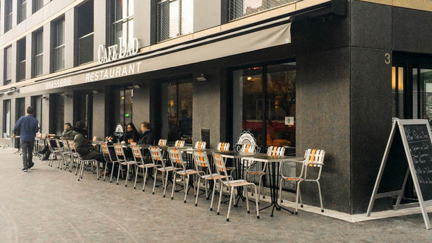 Cafe Dad Terrasse