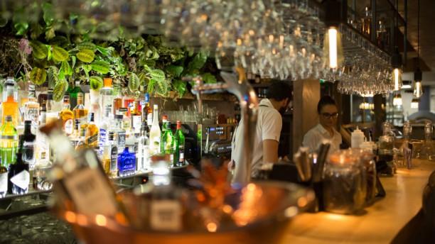Gioia Food Lab Bar