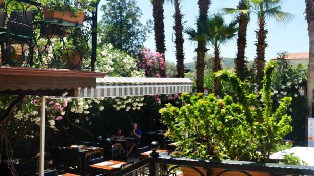 Tonoz's Garden terrace