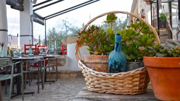 Terrassa Sant Josep In Xàtiva Restaurant Reviews Menu And