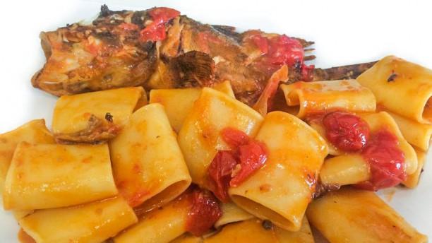Fish & Cheap Paccheri