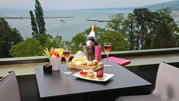 Met Rooftop Lounge Hôtel Métropole Genève In Genève