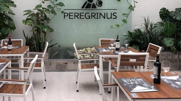 Peregrinus Pontevedra Vista sala