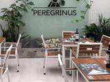 Peregrinus Pontevedra