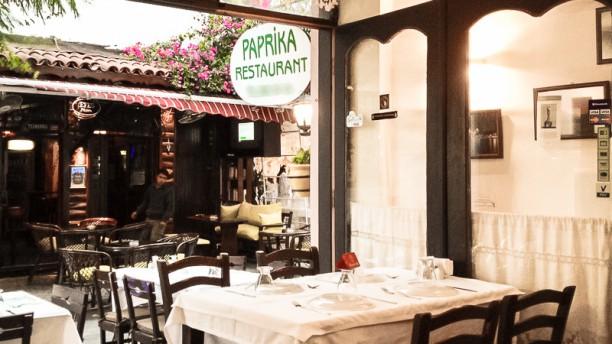 Paprika Terrace
