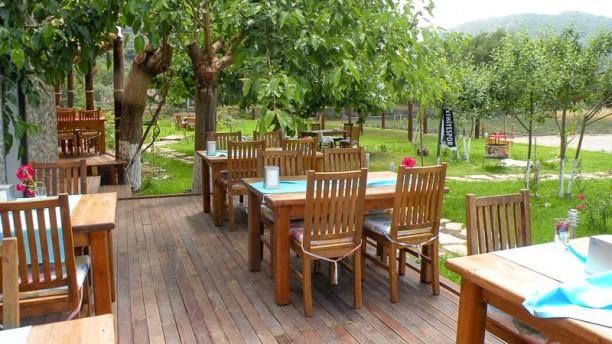 Restaurant Bay Efetto Terrasse
