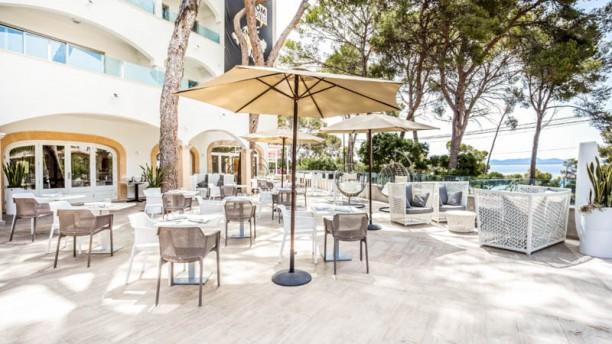 Melassa Restaurant & Lounge Alcanada - SOM Hotels Terraza