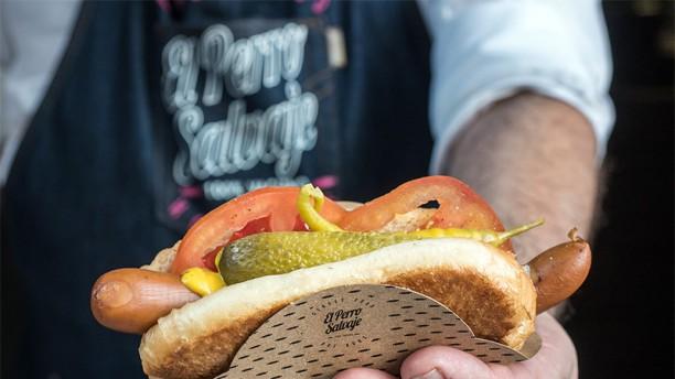 El Perro Salvaje- Espiritu Santo Sugerencia del chef