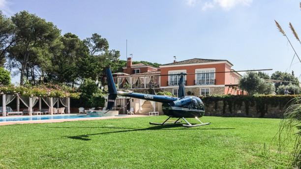 Tagus Experience | Food & Living Jardim