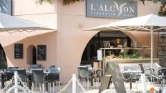 Brasserie l'Alcyon - Restaurant - Antibes