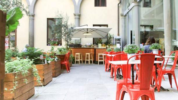 Quinoa La terrazza