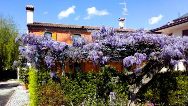 Antica Trattoria Antenore Giardino estivo