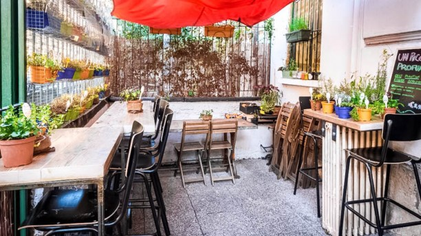 Orto Erbe e Cucina in Milan - Restaurant Reviews, Menu and Prices ...