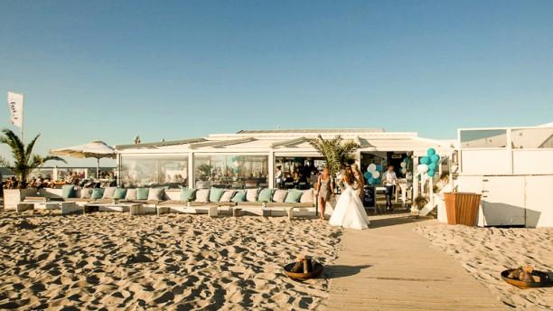 Beachclub Titus Restaurant