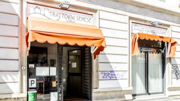 Le Colline Toscane Entrata