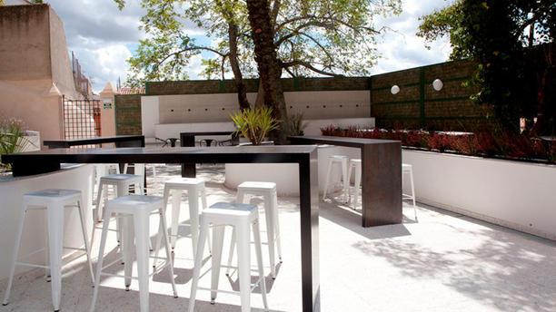 Mastropiero Gastrobar y Jardín Terraza - Jardín Día
