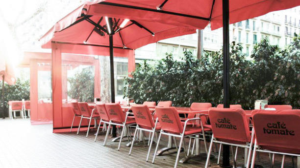 Café Tomate La terraza