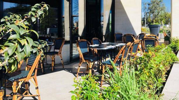 La Brasserie du Forum Vue de la terrasse