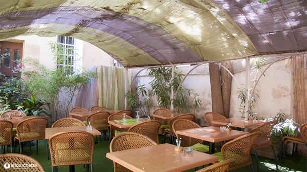 Le jardin d 39 amalula in aix en provence restaurant for Restaurant le jardin morat