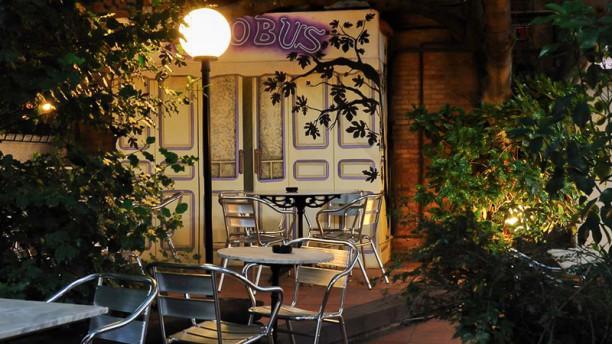Globus Bar Terraza