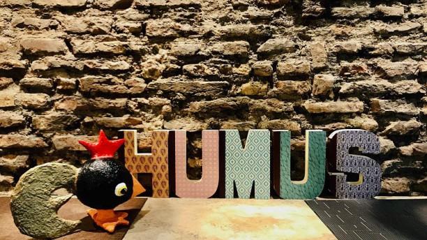 Humus Detaglio