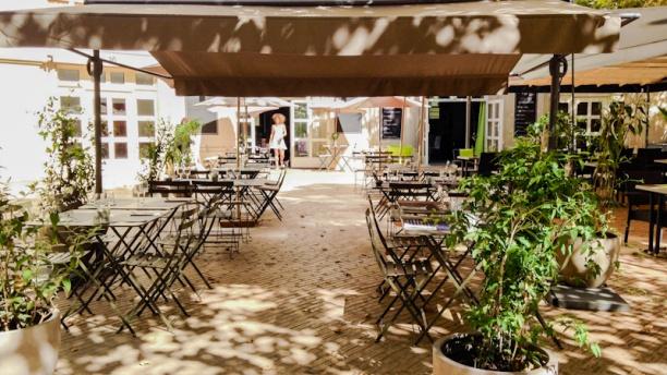 Le papilla restaurant 16 place du nombre d 39 or 34000 for Cuisine 728 montpellier