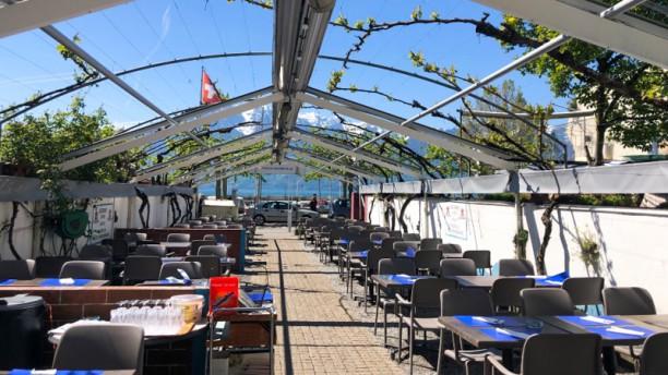 Café du Port Terrasse