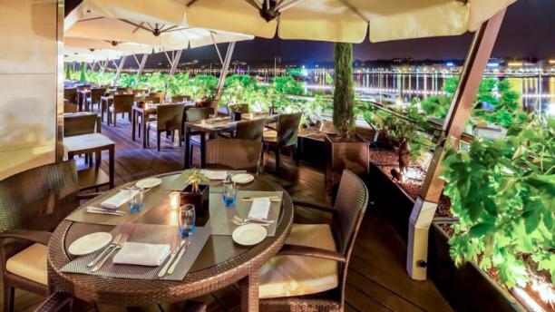 Il Vero - Fairmont Grand Hotel Geneva Terrass