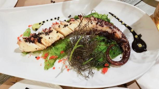 El Punto Restaurante Sugerencia del chef